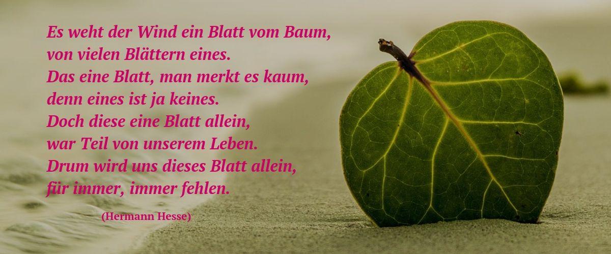 Blatt (Hermann Hesse)
