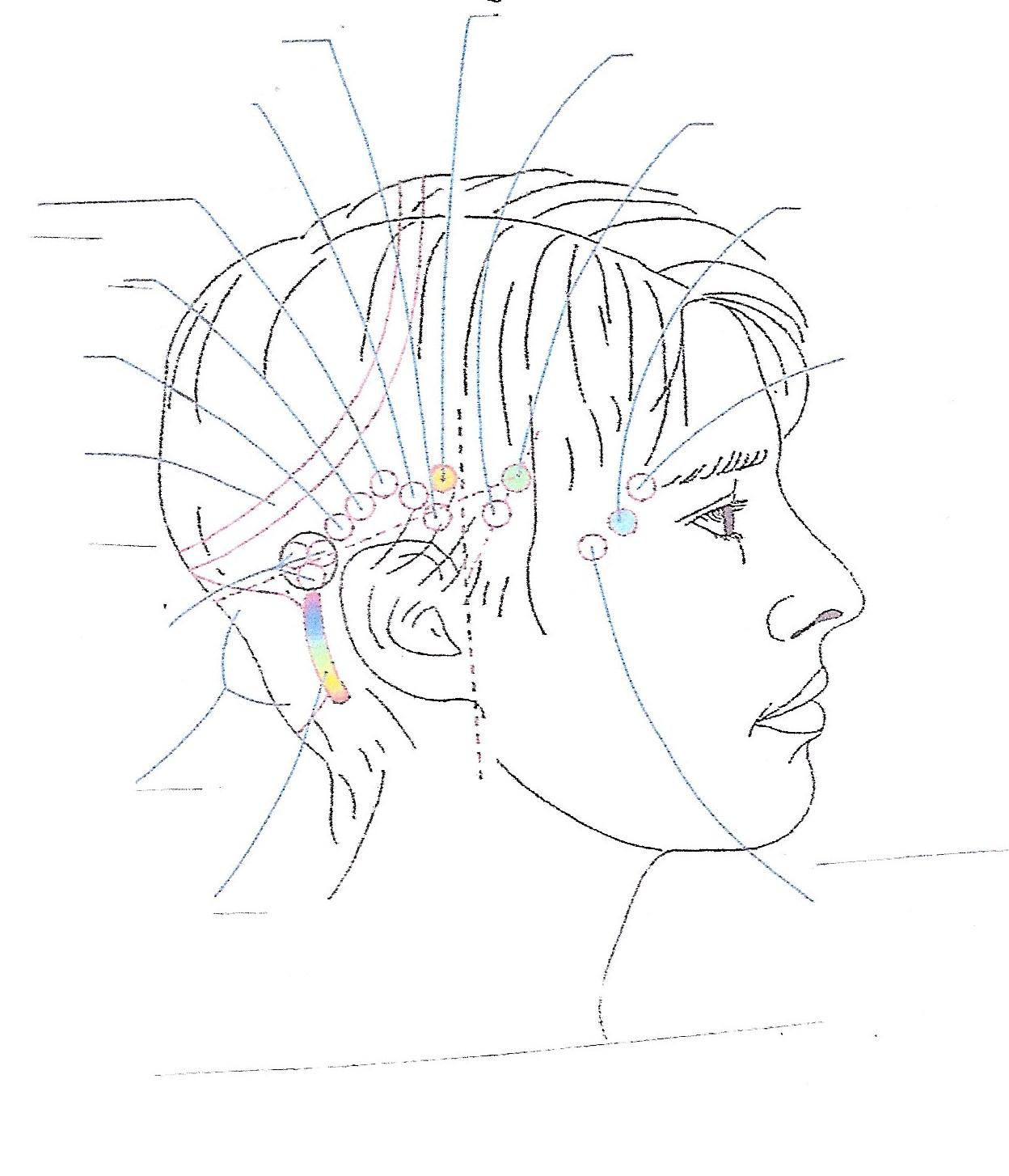 Skizze der Energiepunkte am Kopf